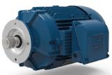 Cast Iron Modular Integral Motor